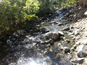 Photo 6. Creek to sit by.