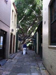 2013-06 June Sydney trip with Poppa, Bondi, city, The Rocks 032